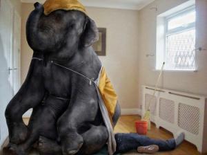 elephant-on-the-chest